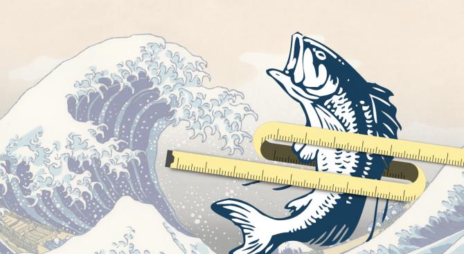 생선기름은 지방세포가 지방을 연소시키도록 역할을 바꾸는 것으로 나타났다.  - 日 교토대 제공